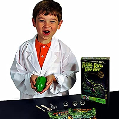 Discover with Dr. Cool Real Bug Digging Kit - Excavate 3 Genuine Specimens!: Toys & Games