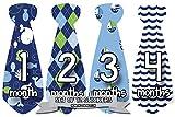 Monthly Baby Stickers Necktie Tie Baby Boy Months 1-12 Milestone (Style 754)