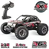 GoStock Remote Control Car, 1:16 RC Car Off Road Hobby Electric Fast Truck Rock Crawler 4x4 Wheel 36km/h Remote Controlled Cars Toy Vehicles for Adults Kids