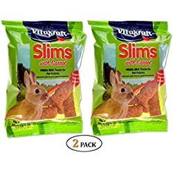 Vitakraft Carrot Slims Rabbit Treats (50g) (Pack of 2)
