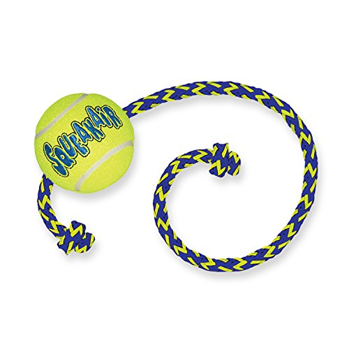 SqueakAir Ball with Rope Medium - Tennis Ball On Rope