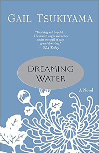 Dreaming Water Gail Tsukiyama 9780312316082 Amazon Books