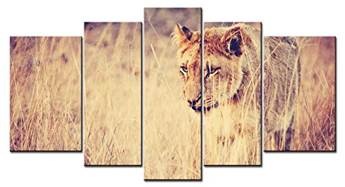 Asian Thatch (SmartWallArt - Animal Series Home Decor Artwork One Hunting Lion Cover Itself Behind The Thatch Staring At The Prey Wall Art 5 Piece Paintngs Print on Canvas Framed for Living)