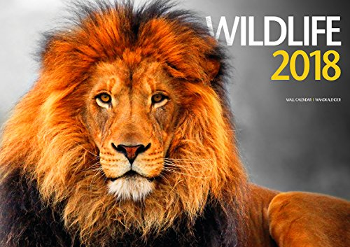 Wildlife 2018 Calendar (English, German and French Edition) by ML Publishing Group