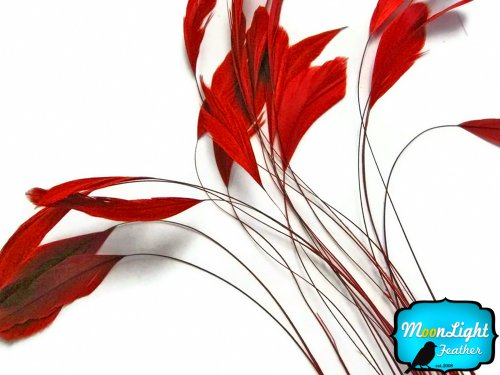 (Moonlight Feather | 1 Dozen - Red Stripped Rooster Coque Tail Feathers Craft Costume)