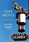 Asian America 9780745647043