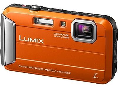 Panasonic DMC-TS25 Waterproof Digital Camera