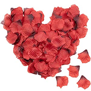 Foraineam 4000 Pieces Silk Rose Petals Artificial Rose Flower Petal for Wedding Party Home Hotel Valentine's Day Decoration, Wine Red 9