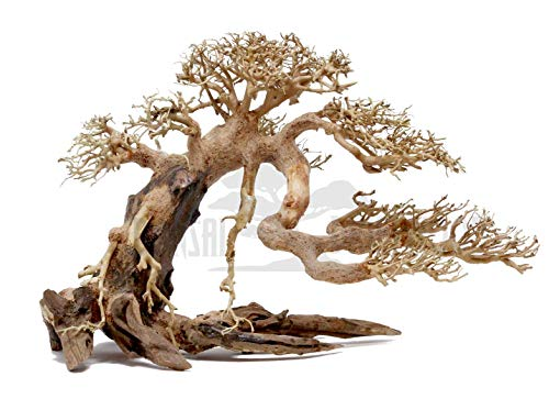 Bonsai Driftwood Aquarium Tree AMX (8 Inch Height) Natural, Handcrafted Fish Tank Decoration | Helps Balance Water pH Levels, Stabilizes Environments | Easy to Install ()