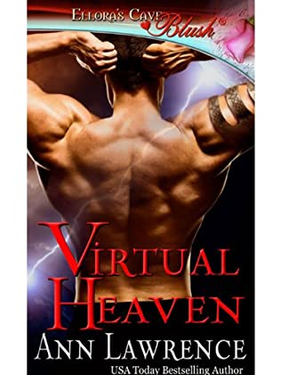 book cover of Virtual Heaven