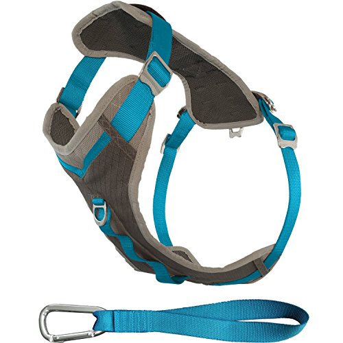 Kurgo Journey Multi-Use Dog Harness, Reflective Harness, Dog Running Harness, Dog Walking Harness, Dog Hiking Harness, Blue/Grey, Large