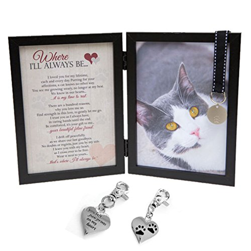 Cat Memorial Picture Frames Kritters In The Mailbox
