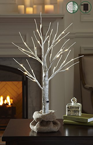 LOFTPLUS LED Birch Tree Hand-Painted Bonsai String Light 24 LED for Indoor Use Warm White Battery-Operated AC Adapter Burlap sack Included - 24inch Tall (Led Tree Wire)