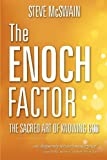 The Enoch Factor, Stephen B. McSwain, 1573125563