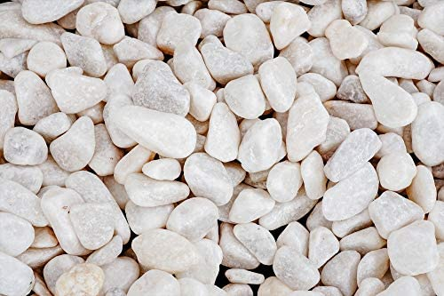 Brynnberg Piedra Decorativa para Jardin e Interior Guijarro (Naturaleza, 850g): Amazon.es: Hogar