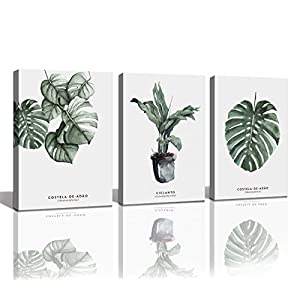 Baisuart Wall Art Decor 3 Pieces Framed Canvas Prints Simple Life Green Leaf Painting Ready to Hang for Home Decoration