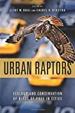 img - for Urban Raptors: Ecology and Conservation of Birds of Prey in Cities book / textbook / text book
