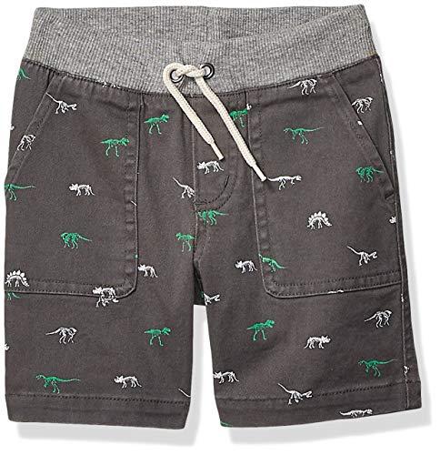 Amazon Brand - Spotted Zebra Boys' Toddler & Kids Pull-on Shorts