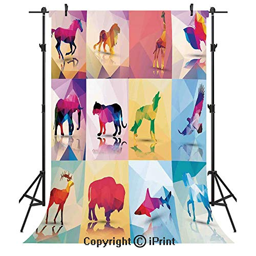 Animal Photography Backdrops,Collection of Geometric Polygonal Animals Horse