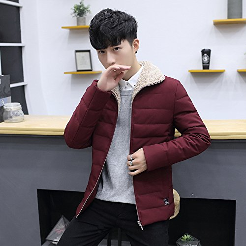 mens cotton wine XXL cotton padded lapel short clothes Men's HHY winter jacket jacket solid Red awxpqC
