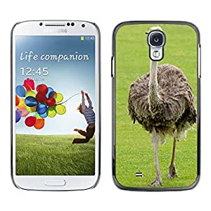 Hot Style Cell Phone PC Hard Case Cover // M00150778 Emu Ostrich Neck Bird Paw // Samsung Galaxy S4 S IV SIV i9500