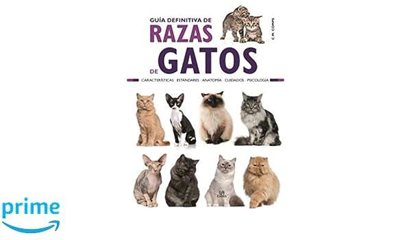 Guía Definitiva de Razas de Gatos (Guías de Mascotas): Amazon.es: Consuelo Martín Comps: Libros