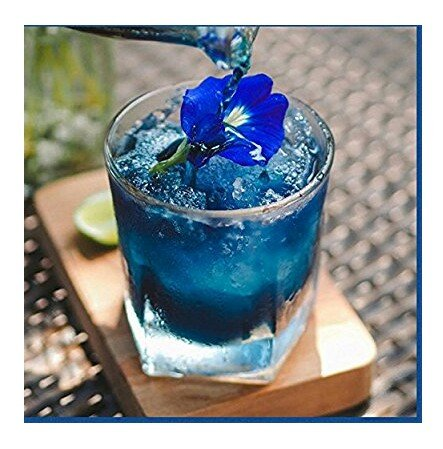Blue pea flower Butterfly pea Flower 1000 seeds, 30 pcs thread by Is yourself (Image #5)