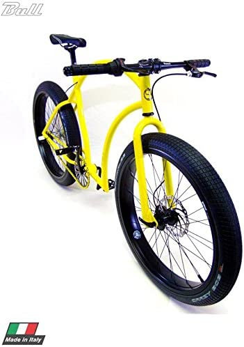 Cicli Ferrareis MTB Fat Bike Fixed Custom Bike: Amazon.es ...