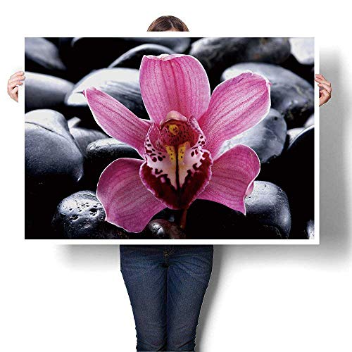 SCOCICI1588 Canvas Wall Art Macro of Pink Orchid and Therapy Stones on Pebble Oil Painting,52