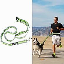 ZOTO Hands Free Dog Leash, Dog Running Adjustable Retractable Waist Belt, Reflective Dog Leash for Running, Walking, Hiking and Jogging, Comfortable Medium & Large Dogs Walking Belt for Leash Trainer (Grey + Green)
