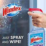 Windex Ammonia-Free Glass and Window Cleaner