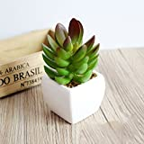 VANCORE(TM) Melaleuca Cactus Mini Potted Artificial Succulent Plants