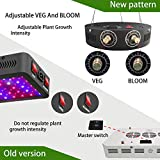 Adjustable 1000W COB LED Grow Light for Indoor