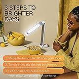Circadian Optics Light Therapy Lamp. UV-Free LED