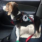 URPOWER Dog Leash Harness Adjustable & Durable