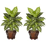 Nearly Natural 6712-VR-S2 Dieffenbachia with Wood