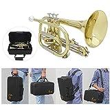 ammoon Bb Flat Cornet Brass Instrument with