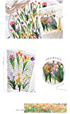 Molshine 240pcs PET Transparent Decorative Stickers –Flowers Plant Series Decals for DIY,Personalize,Bullet Diary Decoration,Laptops,Scrapbook,Luggage,Cars,Books -6 Packs of Different Styles