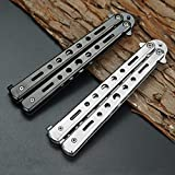 Butterfly Knife, Trainer Martial Arts Practice