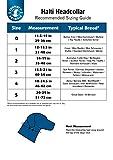Halti Headcollar and Training Lead Combination