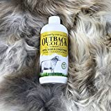 Outback Gold Wool Wash, 16oz Natural Laundry