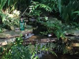 Great Stuff 99112849 Smart Dispenser Pond
