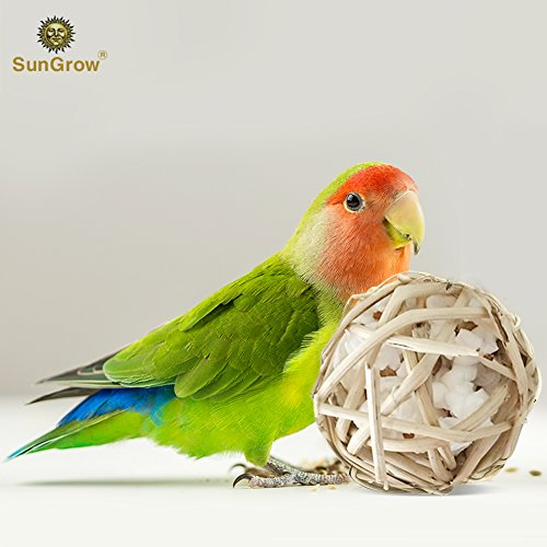 Parrot Popcorn Ball (Vine Ball) — Serves Dual Functions: Popcorn Container  Toy – Safe  All Natural – Relieves Anxiety  Stress of your bird