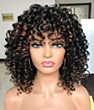PRETTIEST Afro curly Wig Black with Warm Brown
