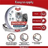 Sentas Cat Collar for 8-Month Validity Period