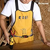 Briteree Work Tool Apron for Men and Women, Torso
