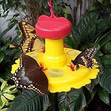 Songbird Essentials SE78200 Butterfly Feeder