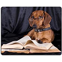 MSD Natural Rubber Mousepad IMAGE ID: 10142599 puppy purebred dachshund