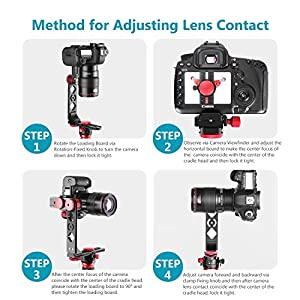 Neewer Gimbal Head Panoramic Head Camera Tripod Head Aluminium Alloy with Arca-Swiss Standard 1/4 inch Quick Release Plate and Carry Bag Max Load 22 Pounds Compatible with Nikon Canon Sony DSLRs (Color: Pro Type)