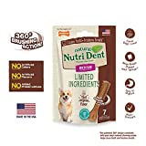 Nylabone NutriDent Natural Dental Chew Treats Filet Mignon, Medium, 7 Count